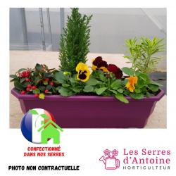 Jardinière 50cm couleur...